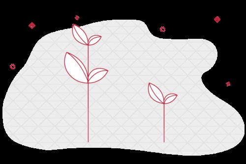raising-seed-round